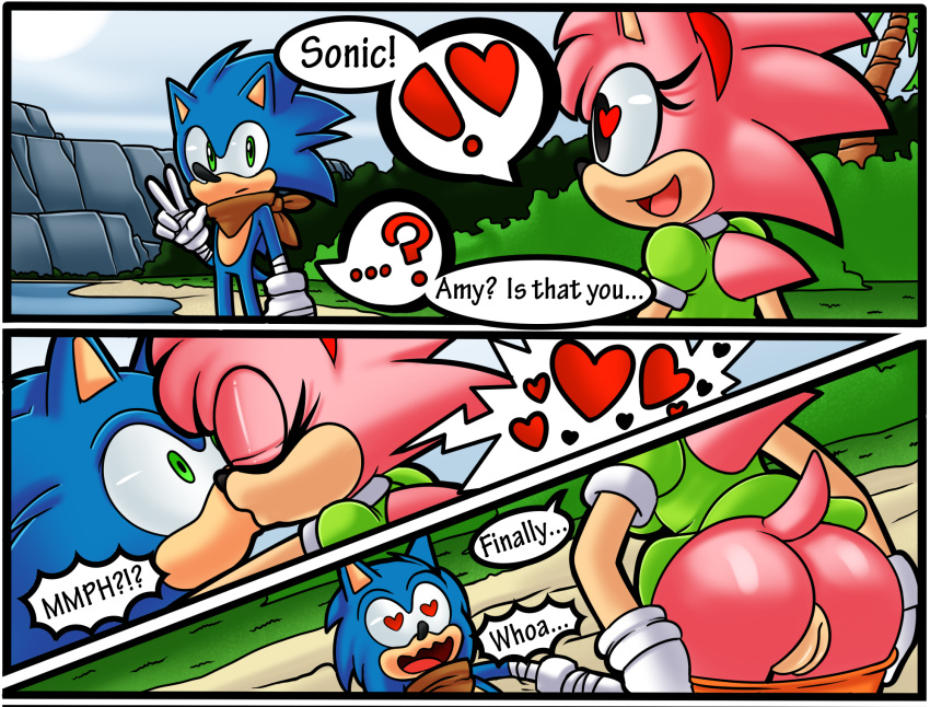 how is sonic old amy from Not another teen movie areola